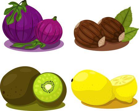 mix fruit: Illustrator of mix fruit