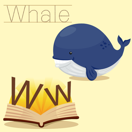 vocabulary: Illustrator of w for whale vocabulary