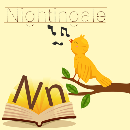 spelling book: Illustrator of n for nightingale vocabulary