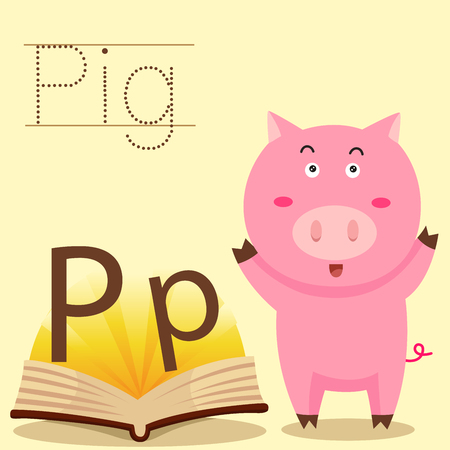 spelling book: Illustrator of p for pig vocabulary