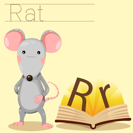 spelling book: Illustrator of r for rat vocabulary