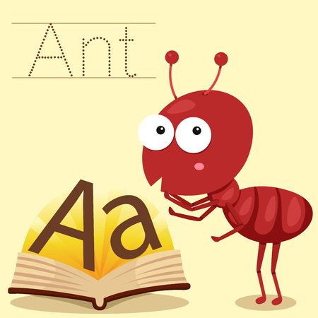 vocabulary: Illustrator of a for ant vocabulary