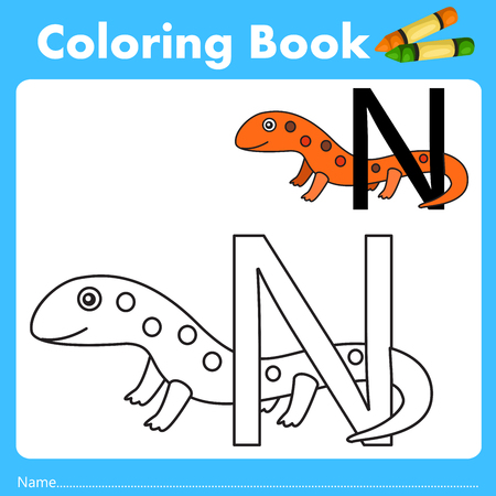 newt: Illustrator of color book with newt animal