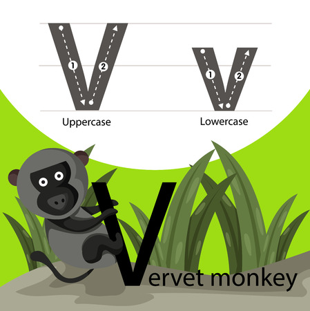 parting: Illustrator of vervet moneky with a font