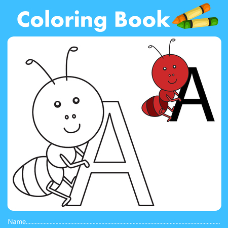 color book: Illustrator of color book with ant animal