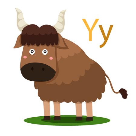 Y alphabet vector animal for kid Illustration