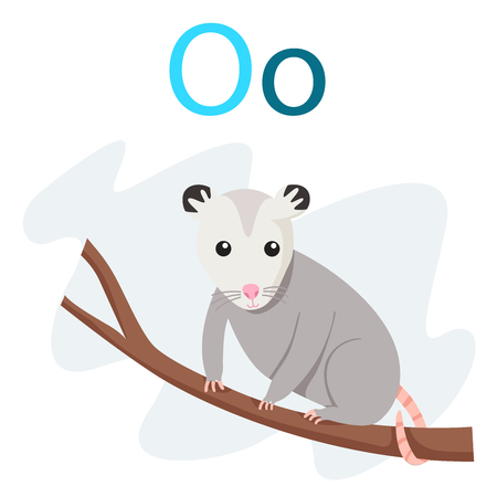 O alphabet vector with animal for kid
