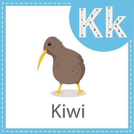 Illustrator of Kiwi bird