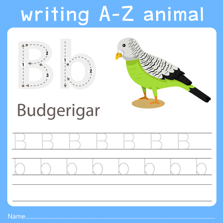 writing a-z animal b budgerigar