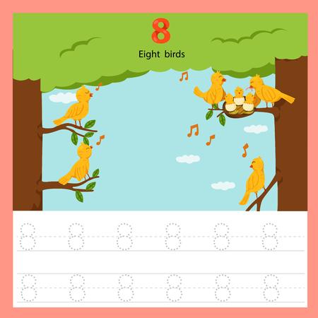 Illustrator of worksheet of eight birds