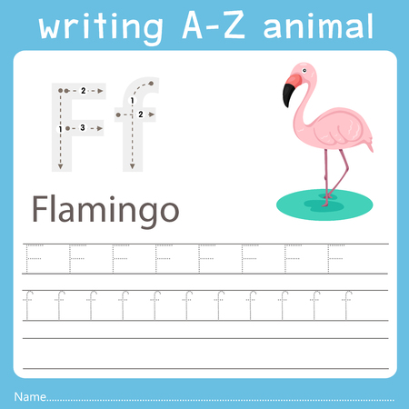 Illustrateur de l'écriture az animal f flanimgo Vecteurs