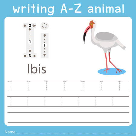 Illustrator of writing a-z animal  i ibis