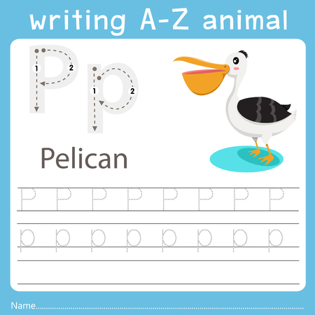 Illustrator of writing a-z animal p pelican