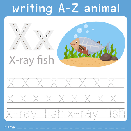 Illustrator of writing a-z animal x