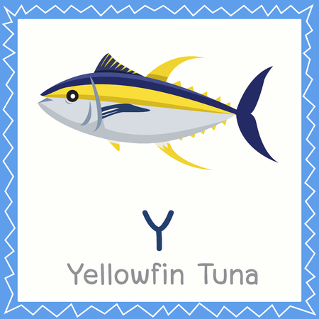 Illustrator of Y for Yellowfin Tuna animal Ilustração