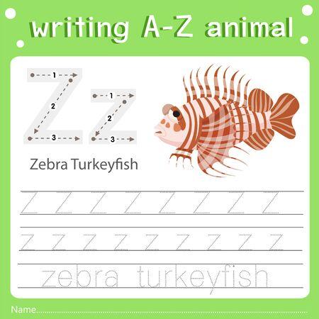 Illustrator of writing a-z animal  z zebra turkpyfish, vector illustration exercise for kid Иллюстрация