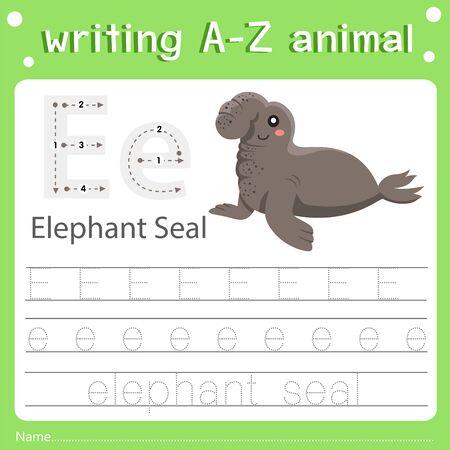 Illustrator of writing a-z animal e elephant seal, vector illustration exercise for kid Иллюстрация