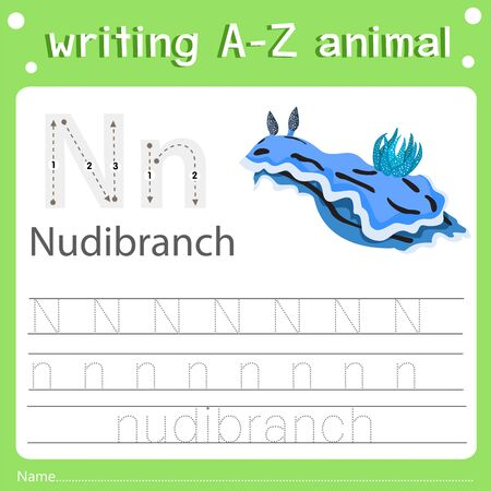 Illustrator of writing a-z animal n nudibranch, vector illustration exercise for kid