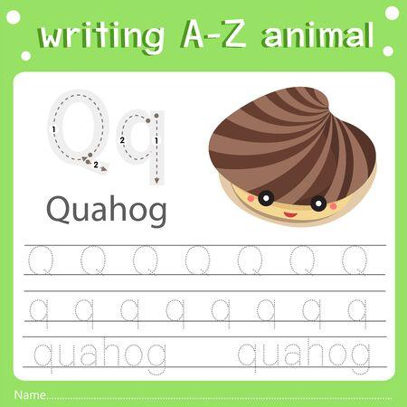 Illustrator of writing a-z animal q quahog