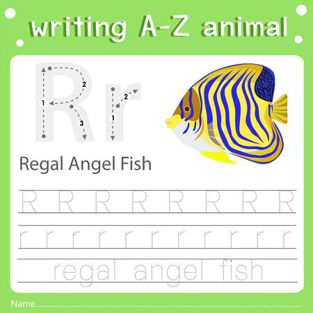 Illustrator of writing a-z animal r regal angel fish