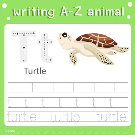 Illustrator of writing a-z animal turtle