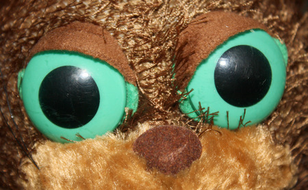 close up eyes: brown cat doll looking, eyes close up