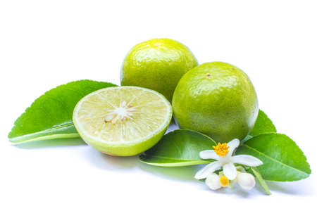 Fresh lime with leaves, Isolated on white background photo