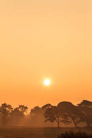Sonnenuntergang  Standard-Bild - 24478370