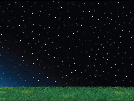 night background: Green Grass and Night Sky Landscape Background Illustration