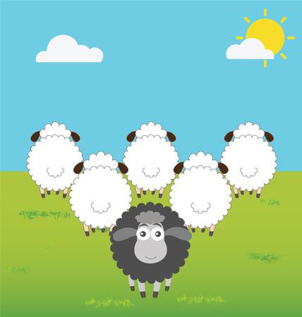 oveja negra: Ovejas Negro Con Pensamiento Diferencia Vectores
