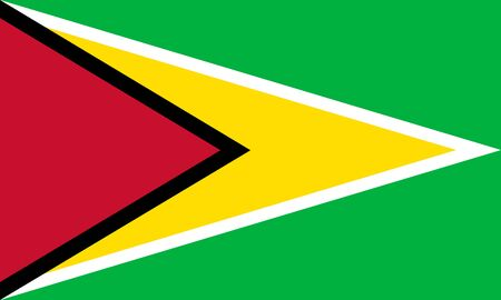 georgetown: Standard Proportions and Colr for Guyana Flag