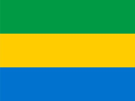 gabon: Standard Proportions and Color for Gabon Flag Illustration