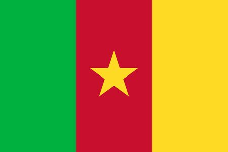 proportions: Standard Proportions and Color for Cameroon Flag