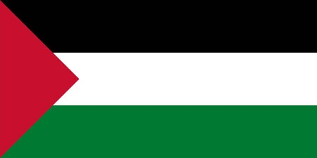 proportions: Standard Proportions and Color for Palestine Flag
