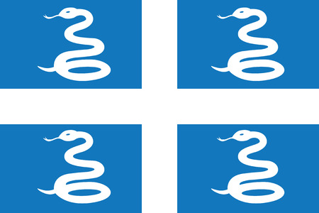Standard Proportions for Martinique Unofficial Flag