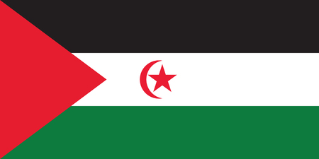 national women of color day: Standard Proportions and Color for Western Sahara Official Flag