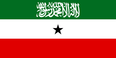 national women of color day: Standard Proportions and Color for Somaliland Official Flag