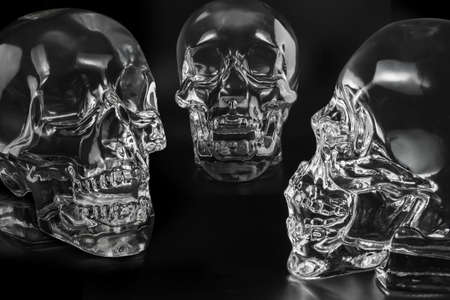 speach crystal head  skulls photo