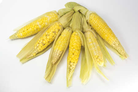 boil: sweet and delicous  little corn strain  cooked  by water boil ready to eat
