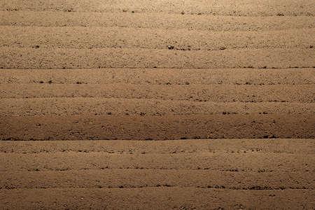 interior wall decoration texture seem like soil layer very beautiful Archivio Fotografico