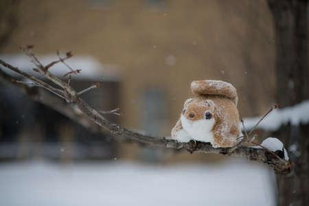 cute fatty ezo momonga hokkaido siberian flying  squirrel doll on tree in  winter season with snow fall Stock Photo