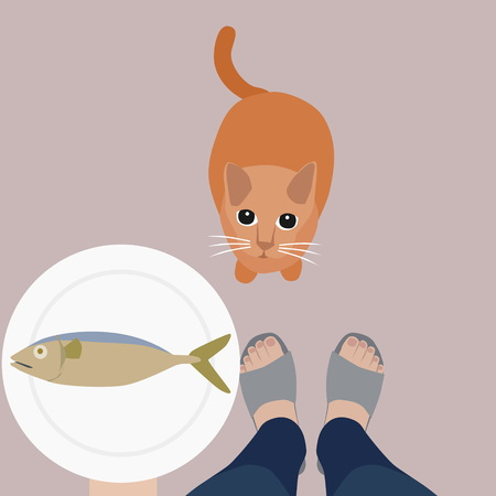 a cat sitting and looking up to its owner waiting for fish illustration.