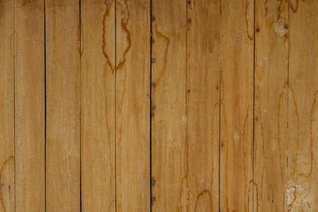 wood texture background: wood texture and background