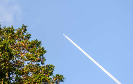 contrail: contrail of an airplane in the blue cloudless sky