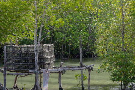Fish traps or Crab traps for used in fishing boat in Thailand