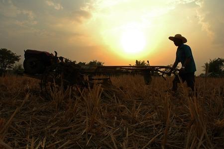 nutrientes: Para arar los cultivos de arroz o de tocones COB después de la cosecha con el fin de hacer que los procesos de degradación del suelo, que se convierte en una fuente de la materia y de las plantas nutrientes orgánicos. Foto de archivo