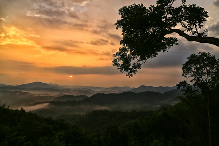 renowned: The point of view of the Huai Ton Hai and a renowned tree attractions at one of the most popular of the early Sukhothai, Ban Na Ton Chan, SI Satchanalai district. Stock Photo