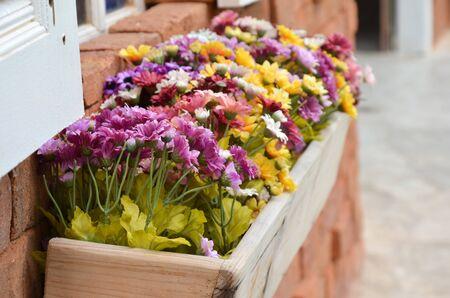 flower Stock Photo - 15668503