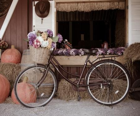 bicicleta retro: Bicicleta y flores. Una vendimia hermosa.