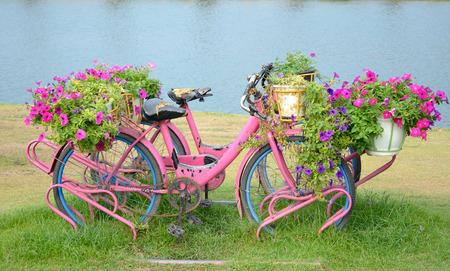 Flores na bicicleta